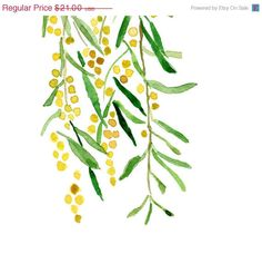CIJ Sale Mimosa print of original watercolor painting ,Yellow and green, tree, Botanical. cottage chic, wall decor, summer, fresh, limited