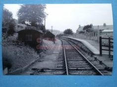 PHOTO  WESTHAM HALT RAILWAY STATION  19956 GENERAL VIEW OF THIS SMALL WEYMOUTH A
