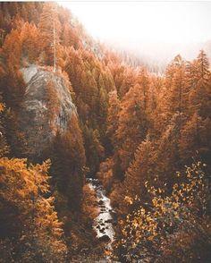 bon voyage - Michi G. Autumn Cozy, Autumn Trees, Autumn Fall, Fall Leaves, Autumn Scenery, Autumn Photography, Travel Photography, Photography Jobs, Photography Degree
