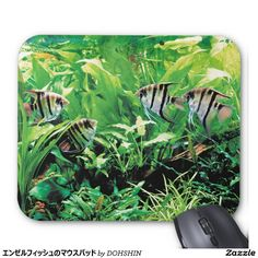 Mouse pad of angel fish