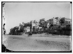 palestine old