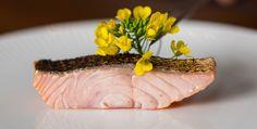 Yellow Flower Salmon