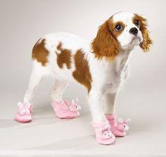 pantofoline da casa