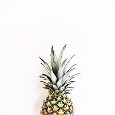 "401 Me gusta, 14 comentarios - SOCIETYGAL - JOIN NOW ⚡️ (@thesocialsociety) en Instagram: ""Be like a pineapple ⚡️ Stand tall, be tough, wear your crown + always be sweet on the inside…"""