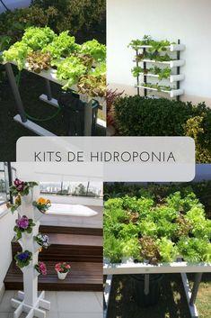 08ce83bfb As 7 encantadoras imagens do álbum Kits hidroponia