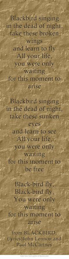 Black bird, the beatles, lyrics Blackbird Singing, Getting Him Back, Rabe, The Beach Boys, Graceland, Meaningful Words, Music Lyrics, Beatles Lyrics, Paul Mccartney