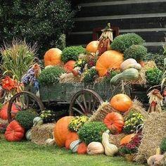 Autumn Display : Scarecrow & Pumpkins Wallpapers - Pumpkin Display : Horse wagon with pumpkins and scarecrows 2 Pumpkin Display, Autumn Display, Fall Displays, Window Displays, Deco Haloween, Pumpkin Wallpaper, Garden Cart, Fall Pictures, Fall Pumpkin Pictures