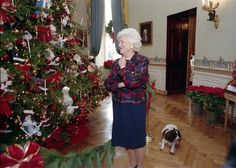 Barbara Bush (and Millie!) admire the White House Christmas tree, December White House Ornaments, White House Christmas Tree, Unique Christmas Trees, Christmas Past, Vintage Christmas, Presidential History, Presidential Trivia, American First Ladies, American Pie