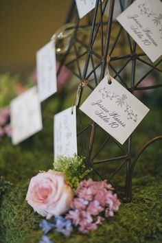 Styled Shoot: French