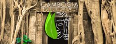 Ta Prohm, Siem Reap 07h30 am  #cambogiaviaggi #siemreap #taprom #archeology