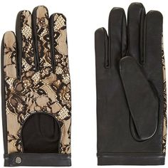 BCBGMAXAZRIA Leather and Lace Gloves (310 HRK) ❤ liked on Polyvore featuring accessories, gloves, black, leather gloves, lined gloves, bcbgmaxazria, cashmere-lined leather gloves and lace gloves
