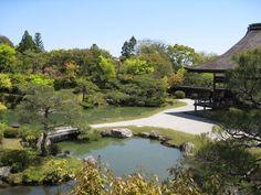 仁和寺の庭園。