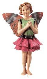 Flower Fairy Zinnia, 216993