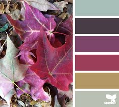 autumn hues remind us of warm apple cider and the smell of a freshly started fire in the fireplace.