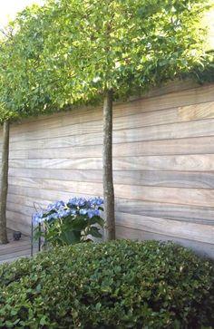 Outdoor Range, Garden Design, House Design, Outdoor Projects, Sweet Home, Home And Garden, Exterior, Places, Green