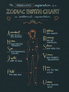 Numerology Spirituality - Anatomical representation of a zodiac birth chart. Astrology Numerology, Astrology Zodiac, Zodiac Signs, Astrology Planets, Astrology Chart, Numerology Chart, Astrology Report, Horoscope Capricorn, Capricorn Facts