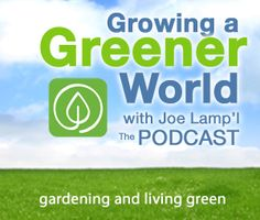 Growing a Greener World (.com) has all kinds of advice, tips & plenty of 30 minute themed gardening video series