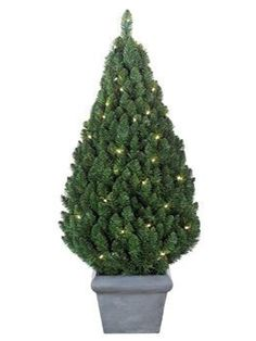 Christmas Tree's - Potted Pear Pre-lit Outdoor 3ft Christmas tree