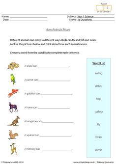 english worksheet how animals move animal homes animal worksheets animal movement verb. Black Bedroom Furniture Sets. Home Design Ideas