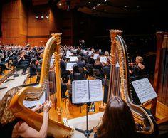 """Für """"Enthüllungen"""" von Bach über Honegger bis Brahms sorgen die Stuttgarter Philharmoniker mit ihrem 9. Konzert aus der großen Reihe. Am 24.05., ab 20 Uhr in unserem Beethoven-Saal. Mehr unter: http://www.stuttgarter-philharmoniker.de/1767.html © Stuttgarter Philharmoniker"""