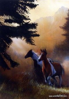 Kevin Daniel Paint Runners | WildlifePrints.com
