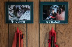 Nice touch in my mudroom. I went to the dollar store for the frames, I had the paint, and the cute little dog tail hangers are from Ikea!