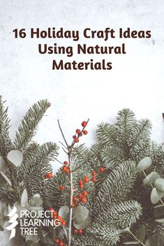 16 Holiday Craft Ideas Using Natural Materials - Project Learning Tree Pinecone Owls, Holiday Crafts, Holiday Decor, Days Until Christmas, Santa Ornaments, Christmas Gnome, Nature Crafts, Star Shape, How To Make Wreaths
