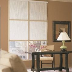 "$101 in ""private time gold""   MyBlinds Opaque Roller Shades - The Home Depot"