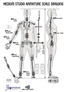 Medium Studio Armature - Ready-made Stop Motion Armature from Animation Supplies
