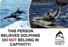 #CaptivityKills #TheCove