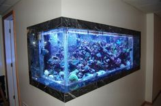 The beauty and mystery of a tropical fish tank is mesmerizing. There are people, whose lifelong passion is setting up and keeping the perfect fish tank. Cool Fish Tanks, Saltwater Fish Tanks, Tropical Fish Tanks, Saltwater Aquarium, Aquarium Fish Tank, Marine Aquarium, Corner Aquarium, Home Aquarium, Aquarium In Wall