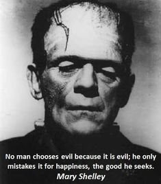 """""""No man chooses evil because it is evil; he only mistakes it for happiness, the good he seeks."""" -Mary Shelley"""