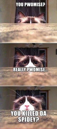 Pwomise?