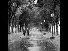 Michael Franks - A Walk In The Rain