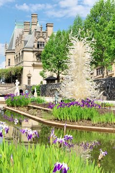 233 best biltmore house gardens images in 2019 - Chihuly garden and glass discount tickets ...