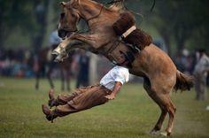 09.11 Le cheval, la plus belle conquête de l'Homme?Photo: AFP/Eitan Abramovich