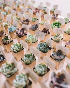 #SucculentWedding inspiration always makes Tuesday's better (Photo: Adam Kennedy Photography)
