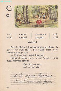 Abecedar 1959 – Un zâmbet de copil… Vintage School, Book Illustration, Illustrations, After School, Kids Education, Flower Crafts, My Childhood, Vintage World Maps, Nostalgia