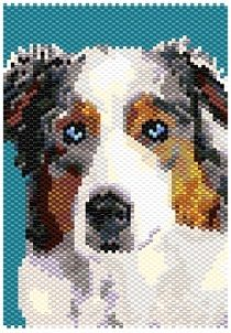Some of the things we love about the Australian Shepherd Pup Australian Shepherd Colors, Australian Shepherd Training, Aussie Shepherd, Australian Shepherd Puppies, Australian Shepherds, Blue Merle, Beading Patterns, Peyote Patterns, Loom Patterns