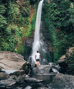 //this last wonderful adventure is at Gigit Waterfall Singaraja Bali see you all tomorrow\\ Photo credit  @jasoncharleshill #adventure #adventurer #amazingnature #awesomenature #beautiful #ditchcomfort #explore #explorza #explorenature #exploretheworld #lovely #nature #ourplanetdaily #photo #photography #scenery #travel #traveler #thatsdarling #traveltheworld #vsco #vscocamera #world by adventures_of_life__