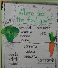 This would be an activity for our plant unit as students will be expected to know where specific plans live and grow. This anchor chart could be made during a class discussion and hung on the wall for future reference