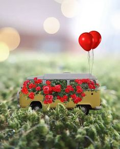 Miniature Photography, Cute Photography, Love Wallpapers Romantic, Cute Wallpapers, Attractive Wallpapers, Miniature Cars, Outdoor Pictures, Balloon Flowers, Cute Little Things