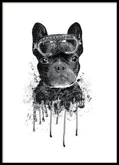 Söt barntavla i svartvitt med hund. Gullig poster / affisch med bulldogg. Söt till barnrummet.