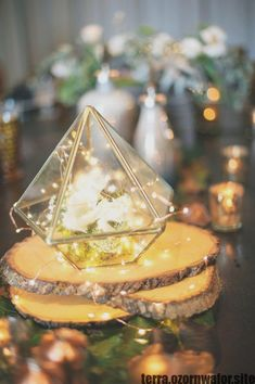 Beautiful hexagonal / triangular / cube terrariums with gold leading, perfect for succulents, air plants, or your mini rock garden. You can also use them for your wedding centerpiece or as a candle holder. I love these modern planters as a decor item as w Terrarium Centerpiece, Terrarium Wedding, Lighted Centerpieces, Unique Centerpieces, Wedding Table Centerpieces, Flower Centerpieces, Wedding Decorations, Centerpiece Ideas, Wedding Ideas