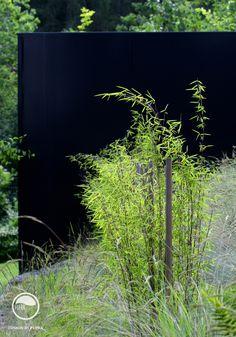 #landscape #architecture #garden #meadow #black Meadow Garden, Prague, Landscape Architecture, Planting, Flowers, Black, Atelier, Lawn And Garden, Plants