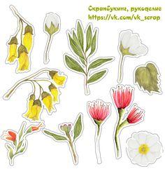 Высечки с цветами и цветочные веночки