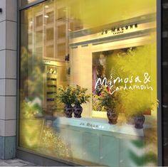 Mimosa & Cardamom by Jo malone - Parfümerie Schnitzler