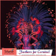 Steal a space for your creativity as we bring you high-quality feathers for Aruba Carnival celebrations that can be used for making various carnival costumes, feather wings,etc., as made in this image from our dyed feather range. #aruba #carnivalfeathers #feathersforcarnivals #feathercostume Visit: www.schumanfeathers.com