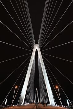 The Stan Musial Veterans Memorial Bridge is illuminated following a preview bridge lighting ceremony at the span over the Mississippi River between Missouri and Illinois on Friday, Feb. 7, 2014. Looks awesome!