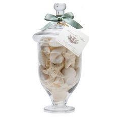 Gianna Rose Sea Shell Soaps in Large Glass Jar